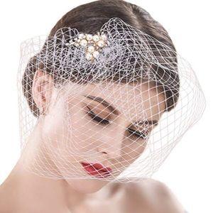 Accessories - Birdcage Wedding veil brand new... never worn!